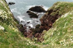 cliffs, the Southwest corner of Wales, Pembrokeshire Coast Path hiking trails