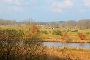 the river Vecht in autumn, along the Vecht river in Overijssel, the Netherlands hiking trails