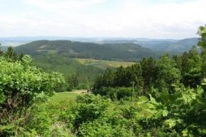 near Wirme,  Rothaar mountains, Sauerland, Germany hiking trails