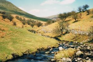 """mountain""stream in Brecon Beacons Wales hiking trails"