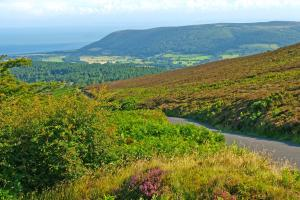 Dunkery hill, the National Park Exmoor, England  hiking trails