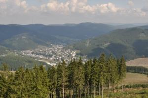 view from the Hohe Bracht,  Rothaar mountains, Sauerland, Germany hiking trails