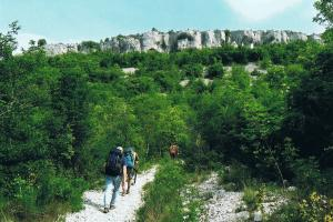start day 3 Buzet Slovenia,  the peninsula Istria (Croatia and Slovenia) hiking trails
