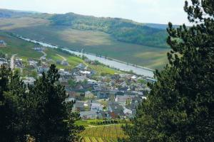 Nittel, the Moselle and Saar area, Germany. hiking trails