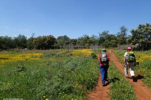 on trailvia Algarviana Portugal hiking trails