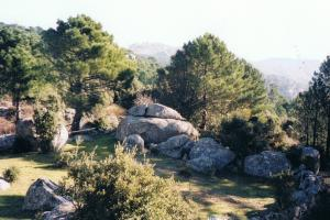 Cartalavone - Levie (610 m.), mare a mare sud, corsica hiking trails France