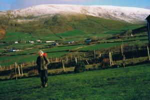 Dingle way wandelroutes Ierland
