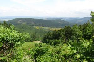 on trail Hundem Paad hiking trails Sauerland Germany