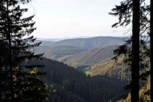 on trail, hiking trails Sauerland Germany