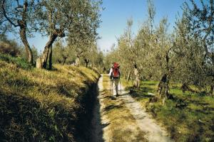 on trail, hiking trails Toscana Italy