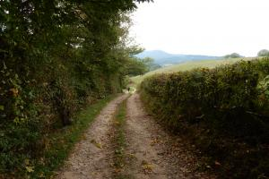a typical footpath in the Morvan, hiking trails Morvan France