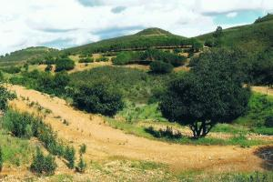 on trail, hiking trails Portugal Via Algarviana