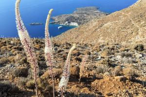Loutro view hiking trails Greece Crete